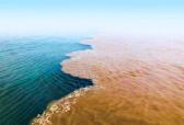 """观澜丨国家战略下的""""黄河生态""""关注:未来黄河泥沙会不会淤平渤海?"""